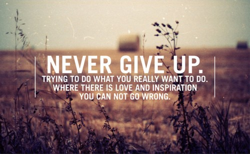 passionate-dream-quote-never-give-up-trying-to-do-what-you-really-want-to-do-where-there-is-love-and-inspiration-you-can-not-go-wrong